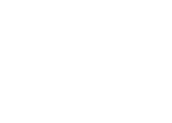 On Scene Services logo